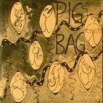 Pigbag